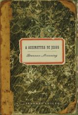 A assinatura de Jesus (Brennan Manning)