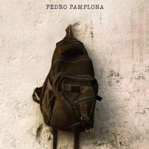 A jornada excelente (Pedro Pamplona)