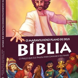 Bíblia: o maravilhoso plano de Deus (Amy Parker)