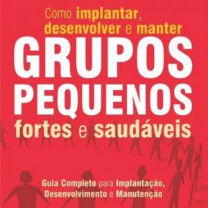 Grupos pequenos fortes e saudáveis (Priscila Laranjeira)