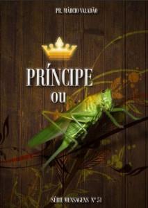 Príncipe Ou Gafanhoto (Márcio Valadão)